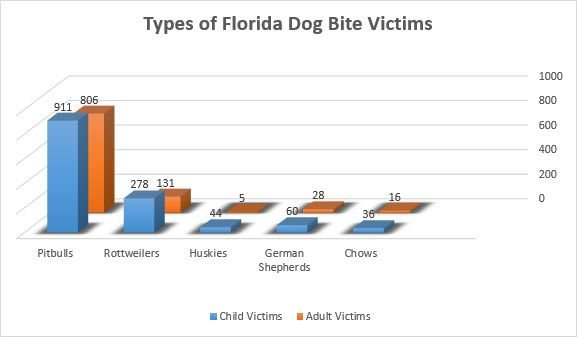 Types of Florida Dog Bite Victims